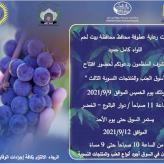 سوق العنب والمنتجات النسوية الثالث 2021