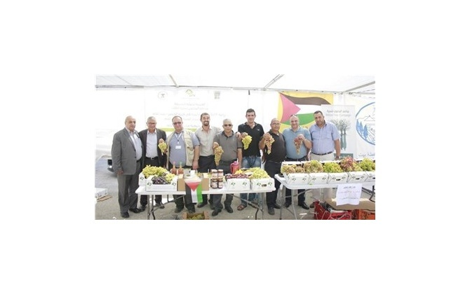 """غرفة تجارة وصناعة محافظة بيت لحم وبلدية الخضر تختتمان فعالية """" خيمة عنب الخضر"""""""